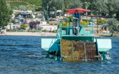 Milfoil harvester encounters mechanical setback on Osoyoos Lake
