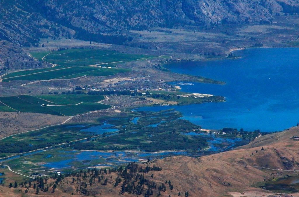 """Oxbows and wetlands remain """"WET"""" in mid-July"""